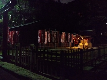 Inari Shrine in the night.jpg