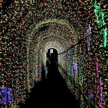 luminous_tunnel.jpg