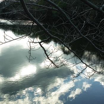 shiny_winter_sky.jpg
